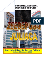 Zeedepuno Documento Final