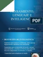 Pesamiento, lenguaje e inteligencia (1).pdf