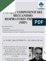 Tebaldi-00-I-5-COMPONENTI-DELLMRP-1°anno
