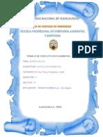 Informe de Conflicto Socio Ambiental Imp (1)