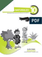 guianaturalesdecimoano-120804125149-phpapp02.pdf