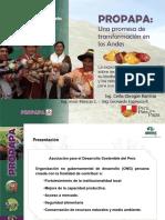 LA PAPA ES NUTRICIÓN.pdf