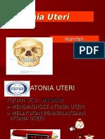 Atonia Uteri APN