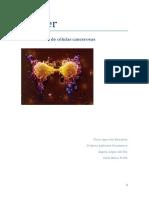 Cancer. Identificación de células cancerosas..pdf
