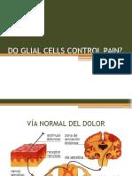 Do Glial Cells Control Pain?
