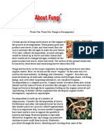 Fungi for Organic Fertilizer