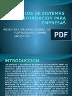 Modelos de Sistemas de Informacion Para Empresas