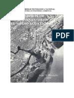 Transporte de contaminantes en medio acuatico, Angel Menéndez, 2010.pdf