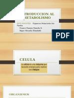 INTRODUCCION_AL_METABOLISMO[1].pptx