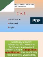 caepresentation-100807161927-phpapp01