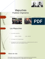 Mapuches Materia