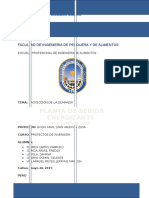 PROYECTOS DE INVERSION SANKYBULL (1).docx