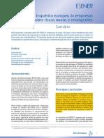 Inquérito Europeu Às Empresas