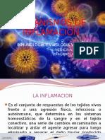 mecanismos-de-inflamacion.pptx
