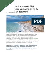 Vida Encontrada en El Mar Muerto Hace Cumpliendo de La Profecía de Ezequiel