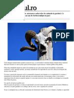 Obiceiul Romanesc Macabru Atarnarea Cadavrelor de Animale in Garduri