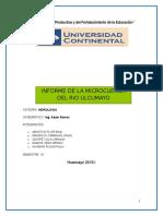 Cuenca Ulcumayo