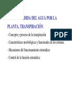 Tema 5 Perdida Del Agua Por La Planta