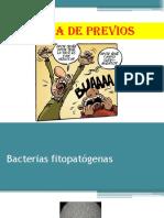 7 Clase Bacterias (1)