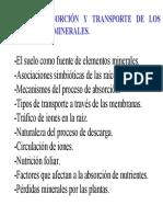Tema 7 Absorcion y Transporte de Los Nutrientes Minerales