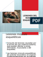 Lesiones Del Sme