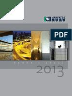 535952_MEMORIA BIO BIO .pdf