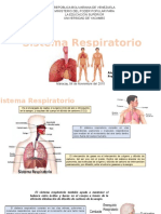 Presentacindesistemarespiratorio 151118022936 Lva1 App6892