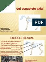 Axial.pdf