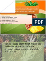 acetobacter xylinum - nanas.pptx