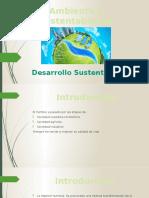Ambiente y Sustentabilidad (1)