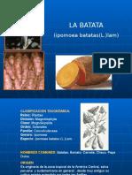 elcultivodelabatata-110109190724-phpapp02