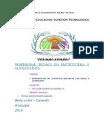 INFORME DE PASAS.docx