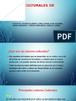 Labores culturales de palto grupo 03.pptx