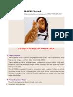 LAPORAN PENDAHULUAN WAHAM.docx