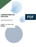 NUCLEO-1-POROSIDAD.docx
