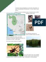 Ecología Vias y Flujos