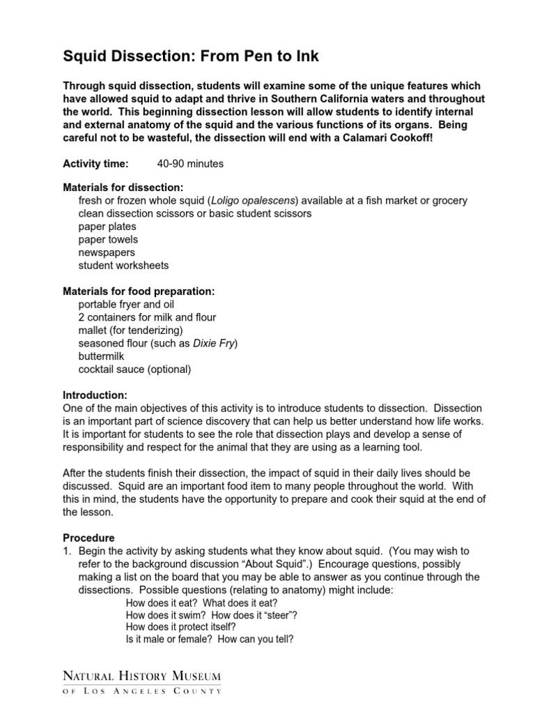 Worksheets Squid Dissection Worksheet m 16 student worksheet full activity nature