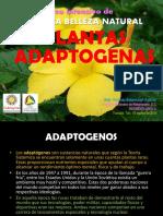 PLANTAS_ADAPTOGENAS.pdf