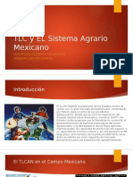 TLC y EL Sistema Agrario Mexicano