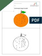 Portocala.pdf
