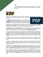 CONTABILIDAD DE COSTO TEORIA.docx