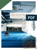Malmö Rapporten