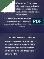Polimorfismi Del DNA Come Marker Genetici