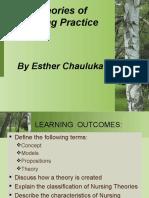 Theories of Nursing Practice