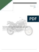 Suzuki Bandit250