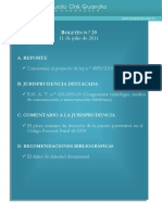 Boletin-29.pdf