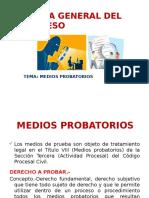 Medios Probatorios 1