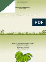 Manual Manejo Poscosecha.pdf