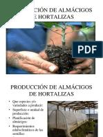 Clase Propagación de Plantines Para Invernaderos