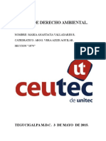 CAMBIO CLIMATICO.docx
